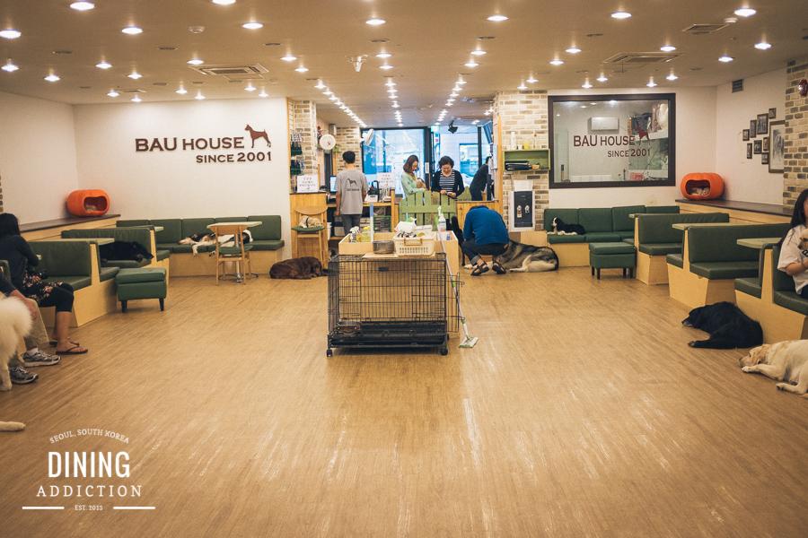 Bauhouse Dog Cafe001 Bau House Dog Cafe 바우하우스 애견카페 hongdae %ed%99%8d%eb%8c%80 cafe  애견카페 south korea seoul restaurant review seoul cafe review seoul cafe korean restaurant review korea hongdae dog hotel dog daycare dog cafe bau house dog cafe