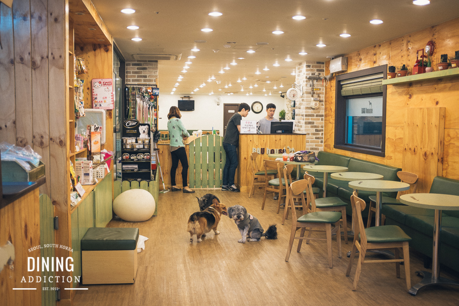 Bau House Dog Cafe Dining Addiction